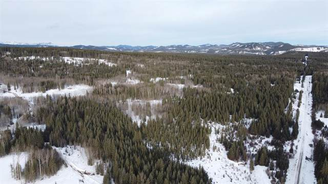 SE 40 acres on Range Road 70, Rural Bighorn M.D., AB T4C 2X7 (#A1061293) :: Canmore & Banff
