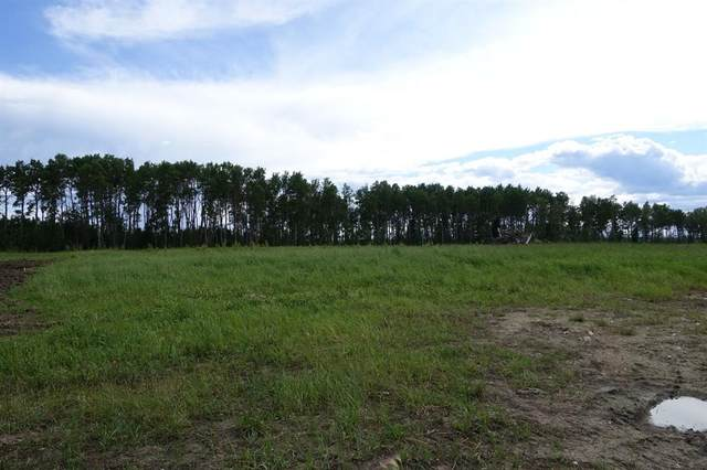 127-32532 Rge Rd 42 Road, Rural Mountain View County, AB T0M 1X0 (#A1062721) :: Western Elite Real Estate Group