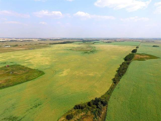 On Highway 56, Rural Stettler County, AB T0C 2L0 (#A1063143) :: Western Elite Real Estate Group