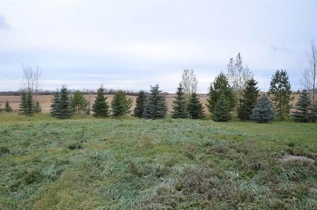 46466 Range Road 213 #334, Rural Camrose County, AB T0C 0L0 (#A1065316) :: Calgary Homefinders