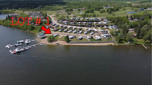 25054 South Pine Lake Road #1, Rural Red Deer County, AB T0M 1S0 (#A1067047) :: Redline Real Estate Group Inc