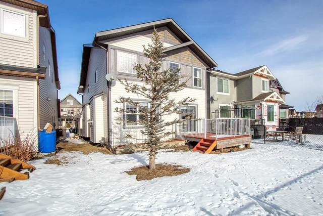 12 Skyview Springs Crescent NE, Calgary, AB T3N 0A5 (#A1067284) :: Western Elite Real Estate Group