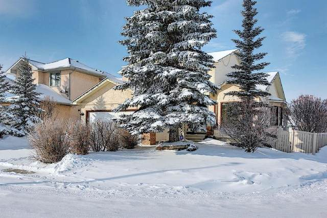 65 Hawkville Close NW, Calgary, AB T3G 3B3 (#A1067998) :: Redline Real Estate Group Inc