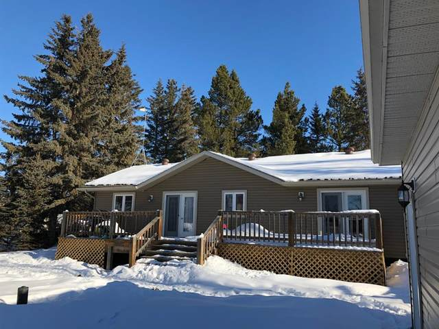 541 Lakeshore Drive, Rural Wetaskiwin County, AB T0C 0T0 (#A1068359) :: Calgary Homefinders