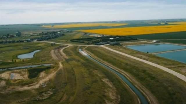 264 Muirfield Crescent, Lyalta, AB T0J 1Y1 (#A1069137) :: Calgary Homefinders