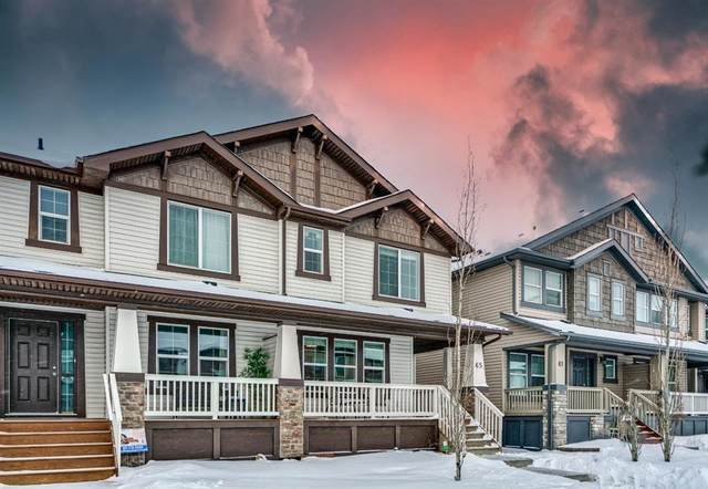 65 Skyview Point Green NE, Calgary, AB T3N 0G5 (#A1070707) :: Western Elite Real Estate Group