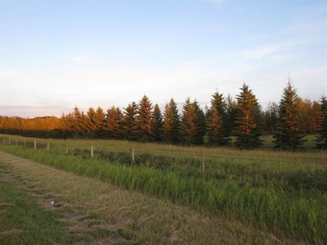 On Township 442, Rural Flagstaff County, AB T0B 4C0 (#A1071743) :: Redline Real Estate Group Inc