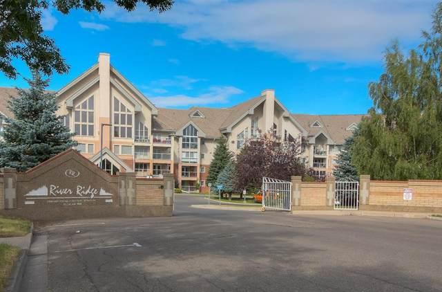 100 2 Avenue S #336, Lethbridge, AB T1J 0B5 (#A1073381) :: Calgary Homefinders