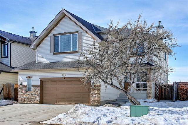 260 Springmere Way, Chestermere, AB T1X 1P2 (#A1073459) :: Redline Real Estate Group Inc
