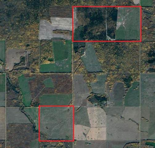 0 Rr 12, Rural Clear Hills County, AB T0H 3T0 (#A1073592) :: Redline Real Estate Group Inc