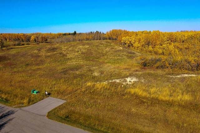 20 Silverhorn Ridge, Rural Rocky View County, AB T3R 0X3 (#A1074293) :: Western Elite Real Estate Group