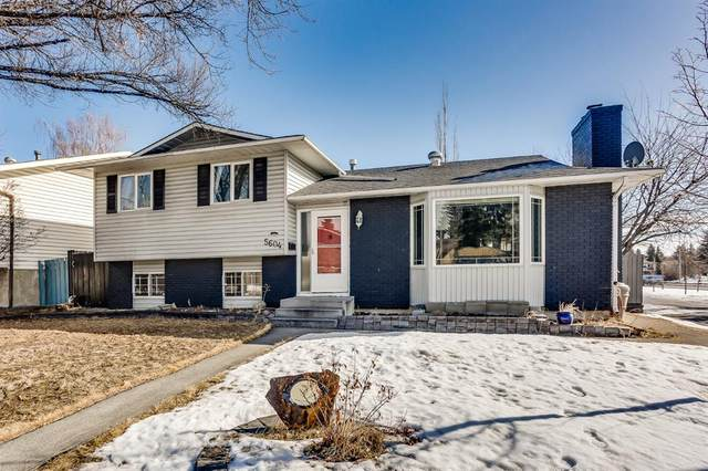 5604 Temple Way NE, Calgary, AB T1Y 3B9 (#A1074386) :: Redline Real Estate Group Inc