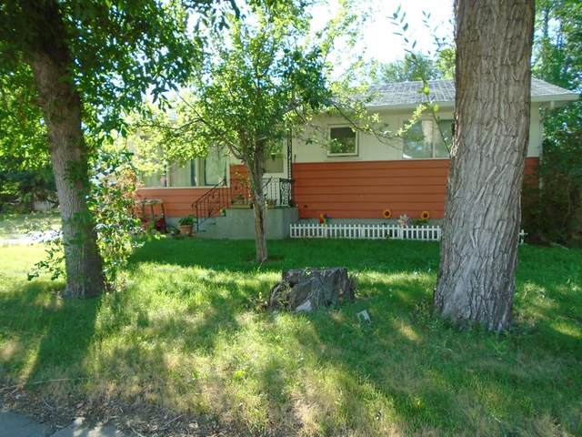 415 & 419 2 Street W, Brooks, AB T1R 0T4 (#A1074480) :: Calgary Homefinders