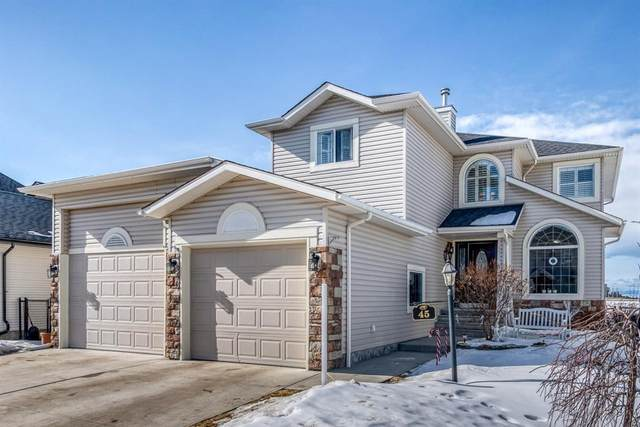 45 Sheep River Heights, Okotoks, AB T1S 2A1 (#A1076000) :: Redline Real Estate Group Inc