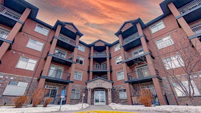 69 Ironstone Drive SE #313, Red Deer, AB T4R 0J8 (#A1076180) :: Greater Calgary Real Estate