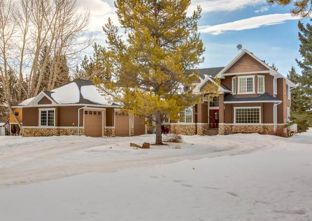 72 West Meadows Estates Road, Rural Rocky View County, AB T2P 2G4 (#A1076259) :: Redline Real Estate Group Inc