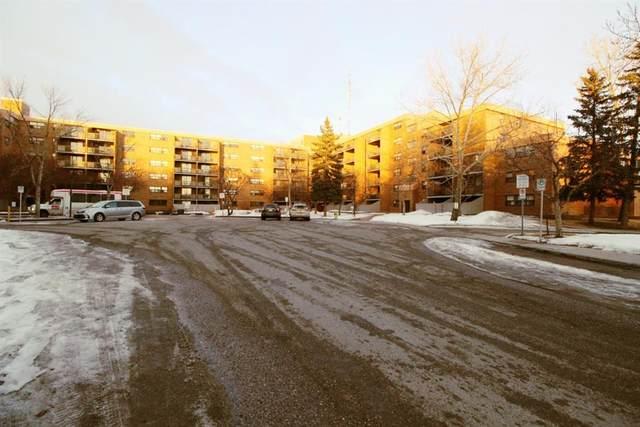 30 Mchugh Court NE #419, Calgary, AB T2E 7X3 (#A1076573) :: Redline Real Estate Group Inc