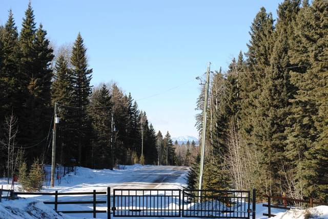 Lot #6 32529 Range Road #52, Rural Mountain View County, AB T0M 1X0 (#A1076613) :: Redline Real Estate Group Inc