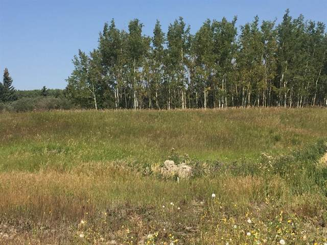 84 Willow Creek Heights, Rural Rocky View County, AB T3G 1G4 (#A1077004) :: Redline Real Estate Group Inc