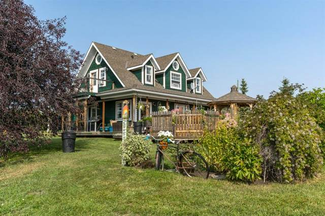 29274 Range Road 43, Rural Mountain View County, AB  (#A1077184) :: Redline Real Estate Group Inc