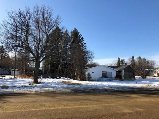 401 Lakeshore Drive E, Rural Wetaskiwin County, AB T0C 0T0 (#A1078882) :: Calgary Homefinders