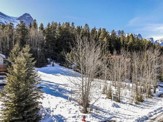 14 Prospect Heights, Canmore, AB T1W 2S2 (#A1079133) :: Canmore & Banff