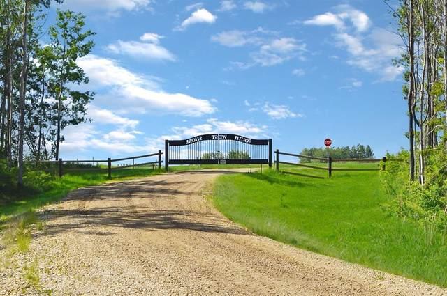 #12 Southwest Shore, Rural Big Lakes County, AB T0G 1J0 (#A1080891) :: Team Shillington | eXp Realty