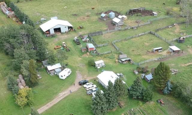Rr195, Rural Thorhild County, AB T0A 3P0 (#A1081850) :: Redline Real Estate Group Inc