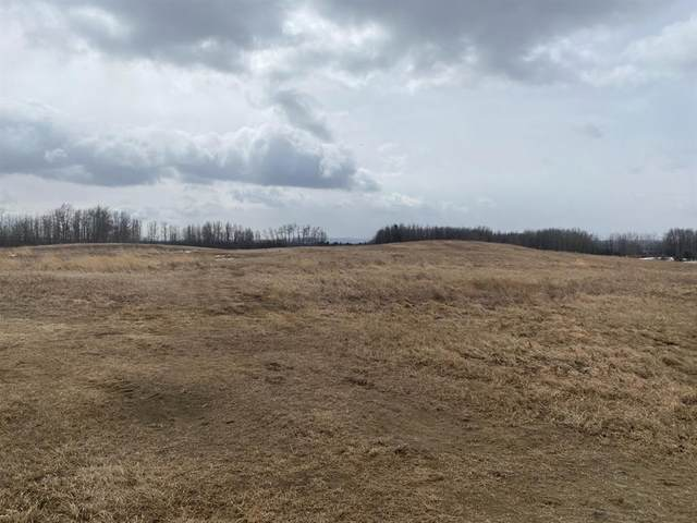 421013 Range Road 20 #3, Rural Ponoka County, AB  (#A1085221) :: Calgary Homefinders