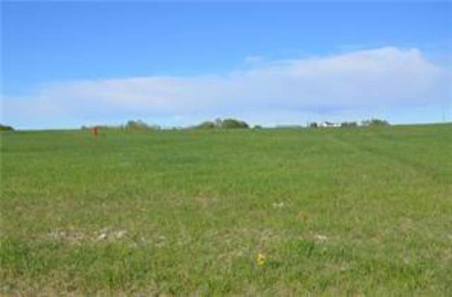 349062 Tamarack Drive, Rural Foothills County, AB T1S 1A1 (#A1085777) :: Calgary Homefinders