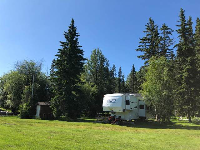 62002 Township Road 462A #148, Rural Wetaskiwin County, AB T0C 0T0 (#A1085810) :: Calgary Homefinders