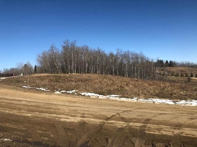 36214 Range Road 250 #149, Rural Red Deer County, AB T0M 1R0 (#A1087175) :: Calgary Homefinders