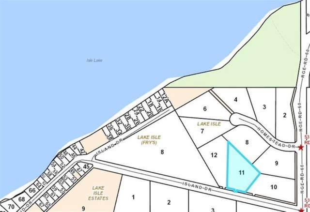 11 Island Drive, Gainford, AB T0E 2B0 (#A1087501) :: Calgary Homefinders
