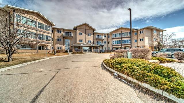 43 Westlake Circle #207, Strathmore, AB T1P 1T6 (#A1089843) :: Calgary Homefinders