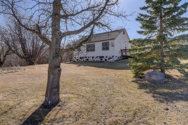 460006 Range Road 224, Rural Wetaskiwin County, AB T0C 1Z0 (#A1090048) :: Redline Real Estate Group Inc