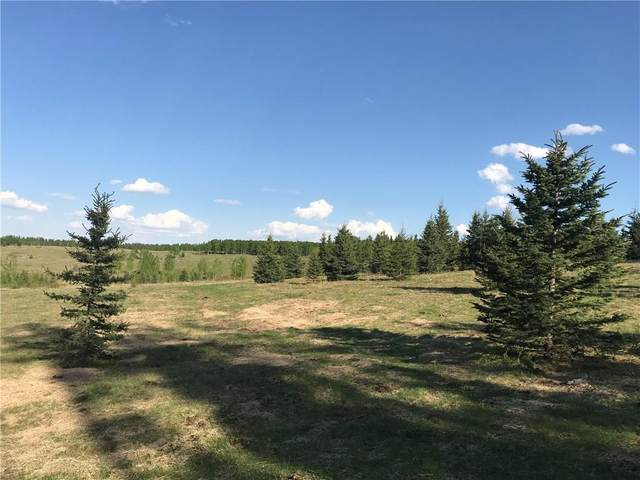 156 Acres South Of Jamieson Road, Rural Bighorn M.D., AB T4C 2G4 (#A1090926) :: Canmore & Banff