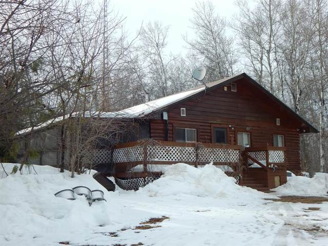 109063 Township Road  175, High Level, AB T0H 1Z0 (#A1091720) :: Team Shillington   eXp Realty