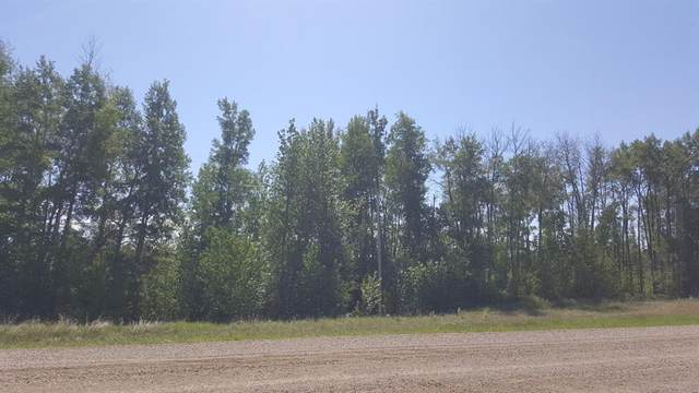 ... Weberville Road, Rural Northern Lights M.D., AB T0H 1R7 (#A1092231) :: Team Shillington | eXp Realty