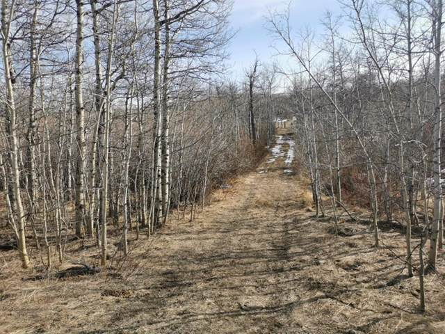 270077 Twp Rd 10, Beazer, AB T0K 0K0 (#A1094336) :: Canmore & Banff