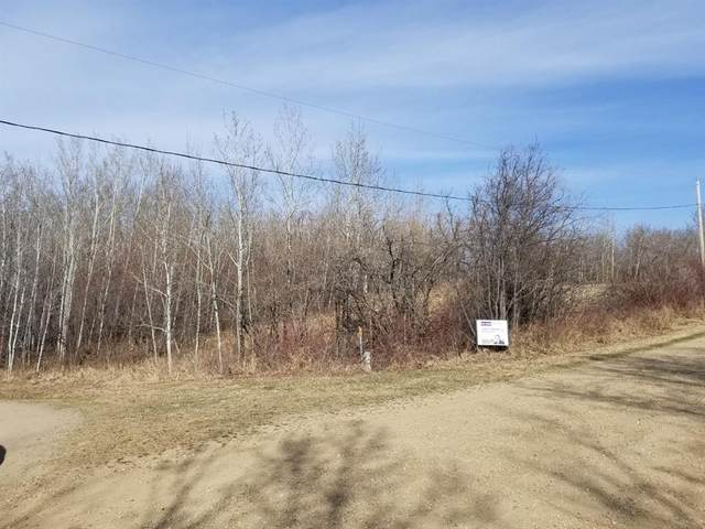 138 Lakeview Drive, Red Deer Lake, Rural Camrose County, AB T0B 0H0 (#A1095850) :: Calgary Homefinders
