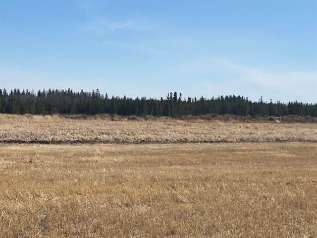 Range Road 83 Township Rd 571, Mayerthorpe, AB T0E 1N0 (#A1096379) :: Redline Real Estate Group Inc