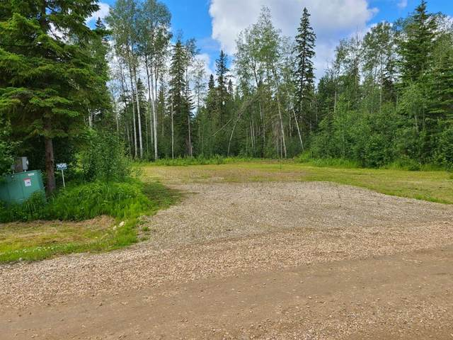 #105 Willow Drive, Rural Big Lakes County, AB T0H 1W0 (#A1096833) :: Calgary Homefinders