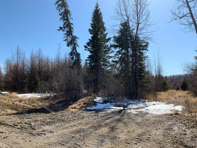 21 704010 Range Road 64, Rural Grande Prairie No. 1, County of, AB T8W 5C5 (#A1097141) :: Team Shillington | eXp Realty