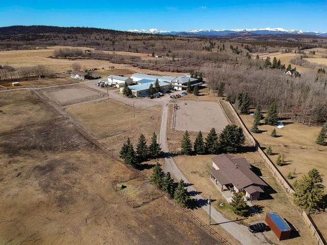 240020 Rge Rd 42 B, Rural Rocky View County, AB T3Z 2T5 (#A1097764) :: Calgary Homefinders