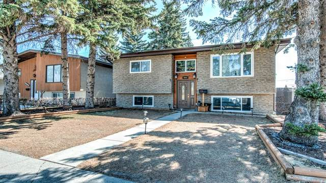 4604 Namaka Crescent NW, Calgary, AB T2K 2H6 (#A1097964) :: Calgary Homefinders