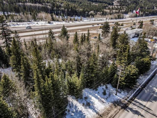 301 2nd Avenue, Dead Man's Flats, AB T1W 2W4 (#A1098194) :: Canmore & Banff