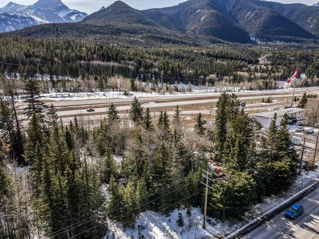 351 2nd Avenue, Dead Man's Flats, AB T1W 2W4 (#A1098215) :: Canmore & Banff