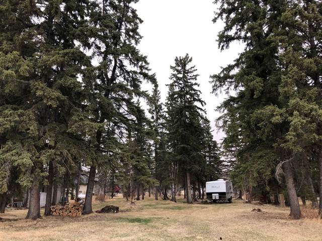 62002 Township Road 462A #236, Rural Wetaskiwin County, AB T0C 0T0 (#A1102086) :: Calgary Homefinders
