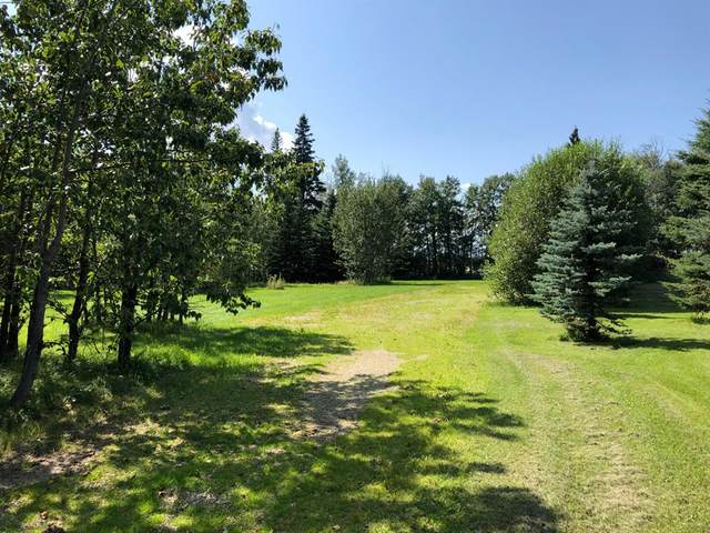62036 Township Road 462 #38, Rural Wetaskiwin County, AB T0C 0T0 (#A1102093) :: Redline Real Estate Group Inc