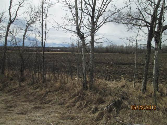 0 0, Grande Prairie, AB  (#A1102667) :: Canmore & Banff